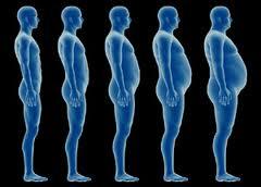 Как набрать вес за счет жира