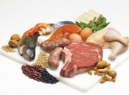 В чем содержатся белки